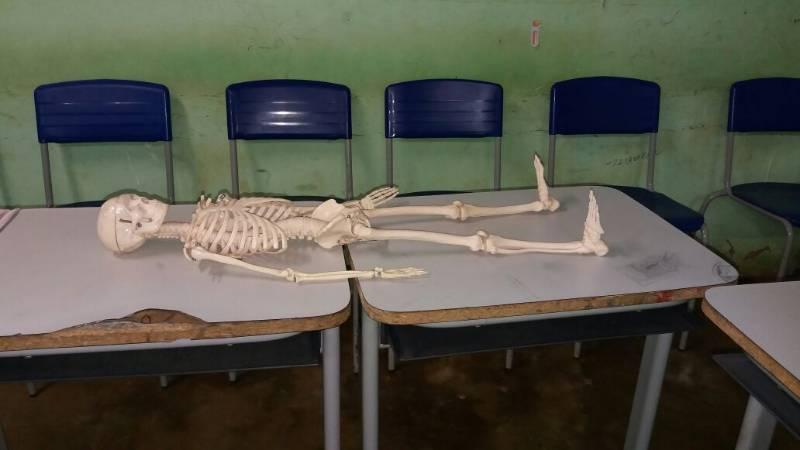 Feira do conhecimento estimula a criatividade dos alunos de escola em Tanque do Piauí
